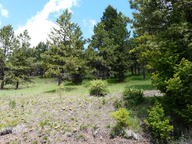 Tbd Wallace Creek Rd, Clinton, MT 59825