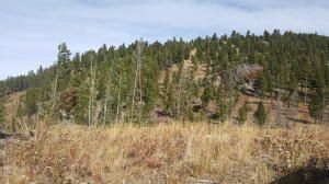 Lot 56 Beaverslide/Access Road, Helmville, MT 59843