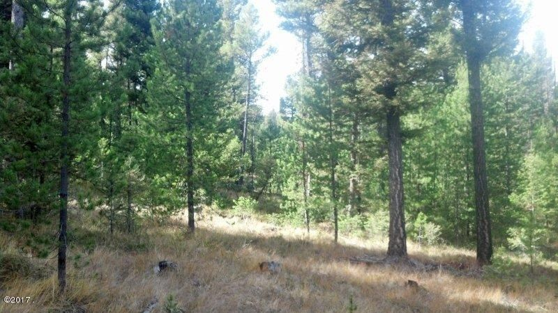 Lot 29 Twin Peaks Road, Helmville, MT 59843