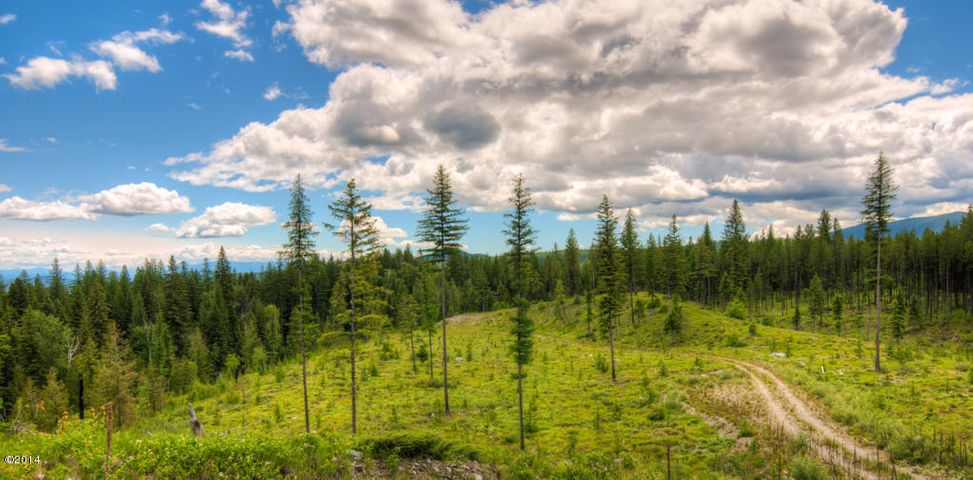 435 W Evers Creek Road, Whitefish, MT 59937