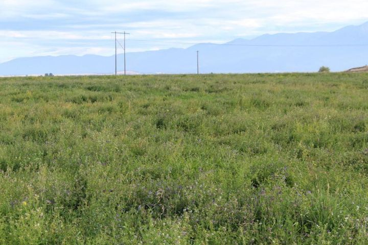 Lot A-1 Sanford Road, Ronan, MT 59864