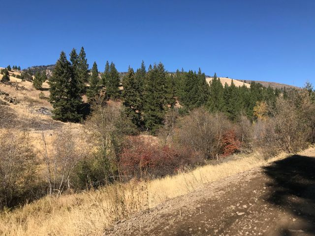Mclaughlin Creek Road, Paradise, MT 59856