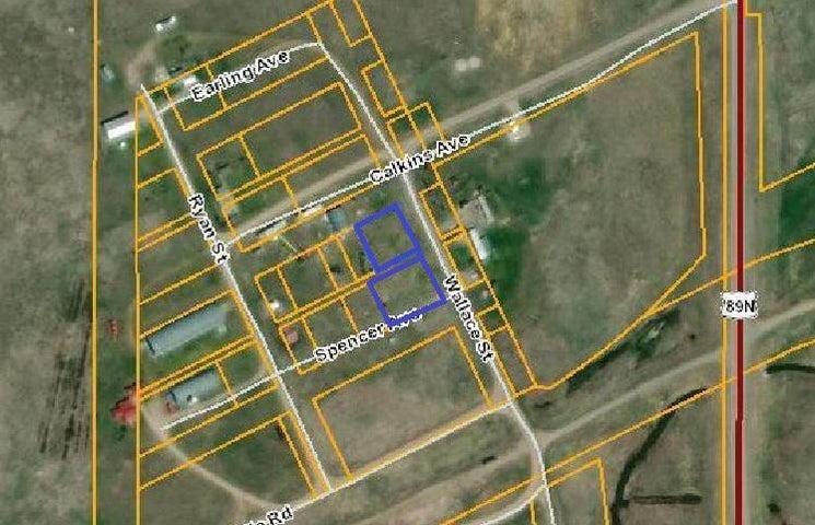 Nhn Wallace Street, Ringling, MT 59642