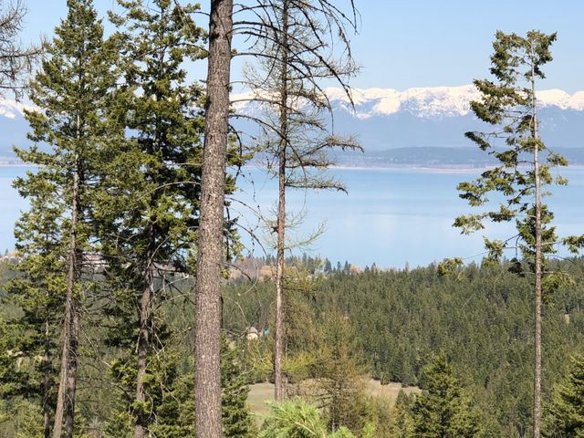 Nhn Blacktail Heights Road Tract 2aa, Lakeside, MT 59922