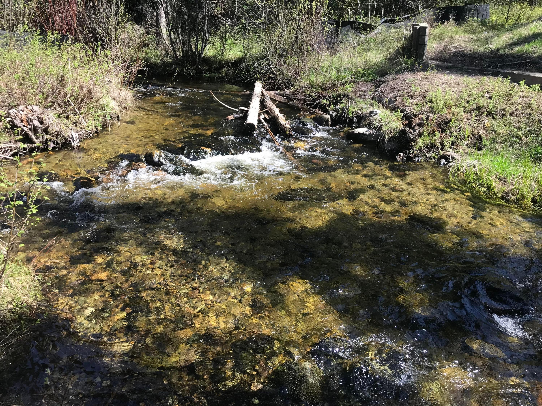 Nhh Lupfer Road (Lazy Creek) Road, Whitefish, MT 59937