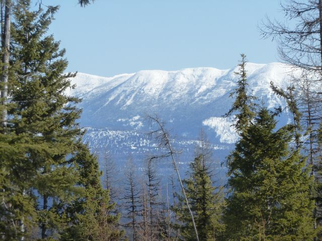 Tr2 Hill Meadows Road, Whitefish, MT 59937