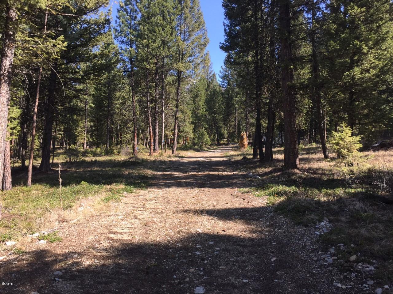 Lot 3 Dick Creek Trail, Sula, MT 59871