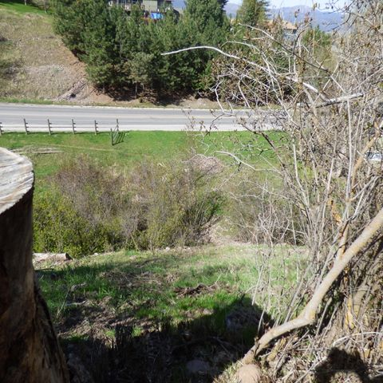 607 Overlook Way