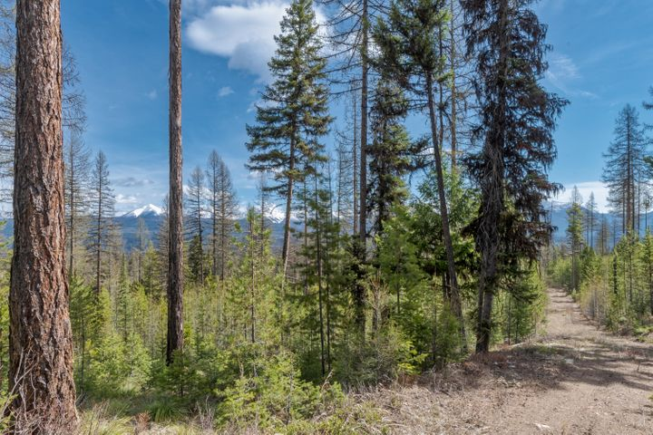 Nhn Beaver Creek Road, Seeley Lake, MT 59868