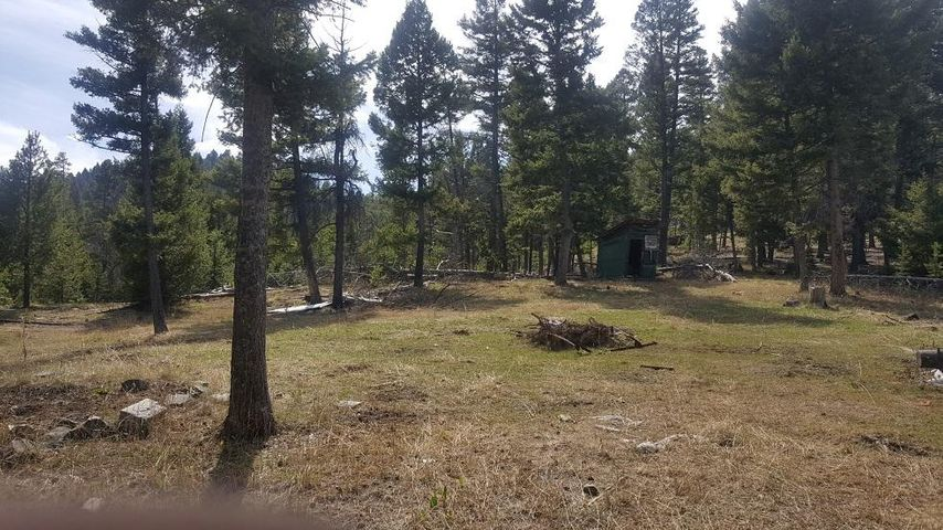 Lot 28 Twin Peaks Road, Helmville, MT 59843