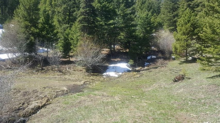 Lot 123 Hidden Canyon Road, Helmville, MT 59843