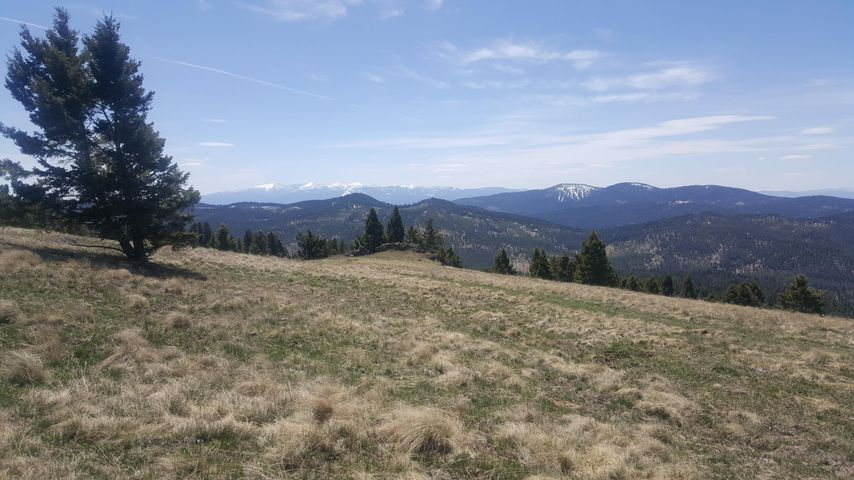 Lot 29 Upper Raven Road, Helmville, MT 59843