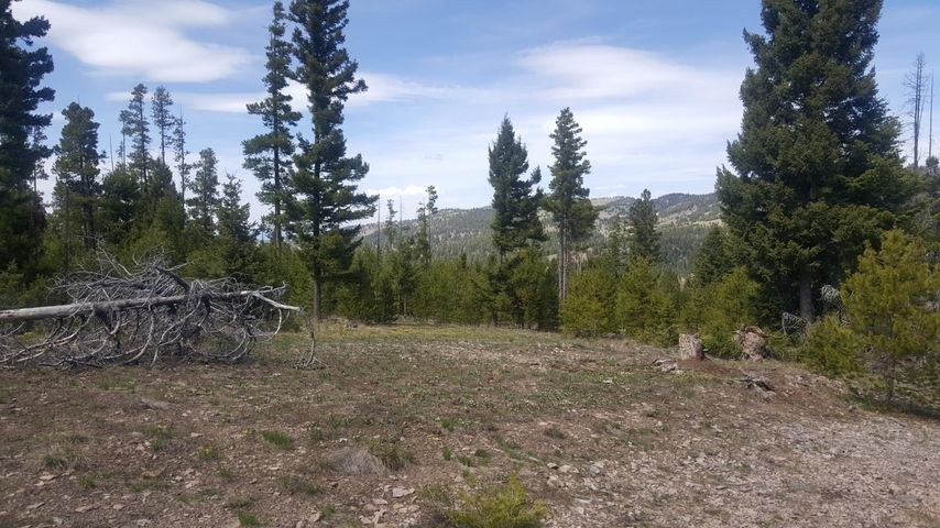 Lot 58 Cat Track Road, Helmville, MT 59843