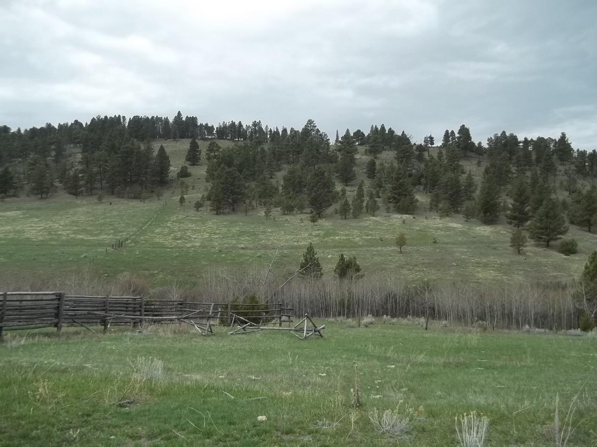 Nhn Pasture Gulch, Martinsdale, MT 59053