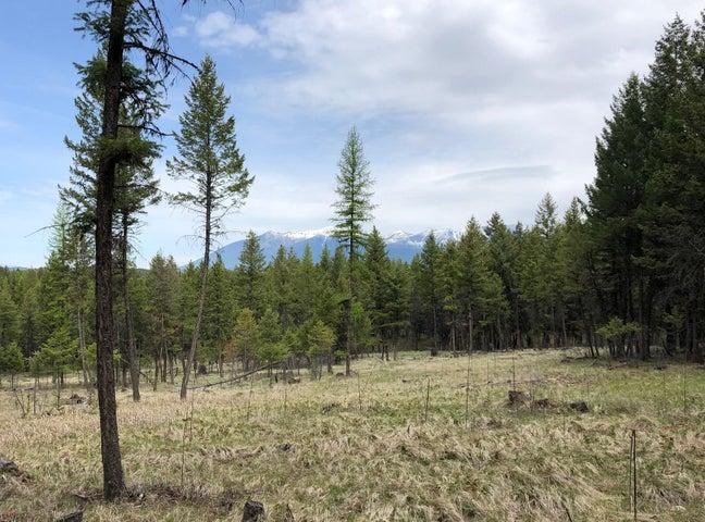 Nhn Grave Creek Road, Eureka, MT 59917