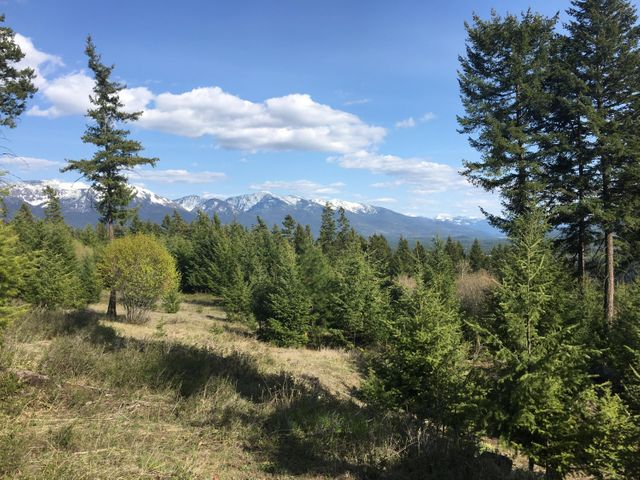 35 Star View Drive, Bigfork, MT 59911