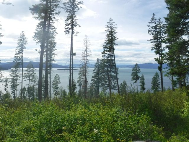 Nhn Doe Run Trail Lot 6, Polson, MT 59860