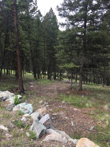 1575 Coon Hollow Road, Kila, MT 59920
