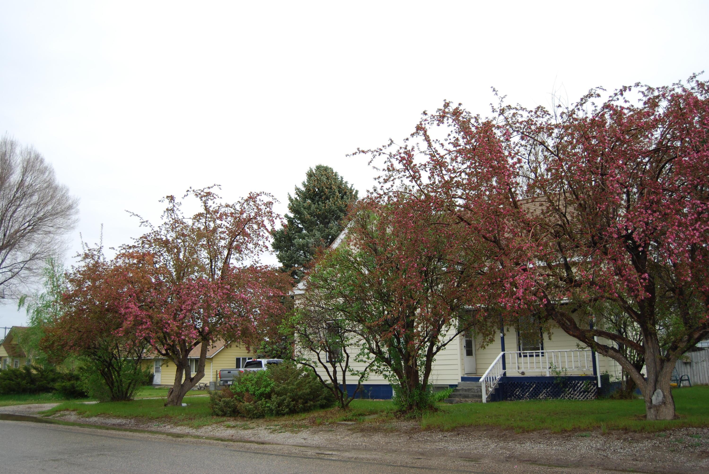 502 N Pine Street, Townsend, MT 59644