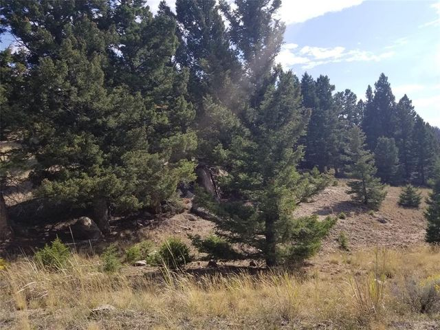 Tract F Beef Trail Estates Road, Butte, MT 59701