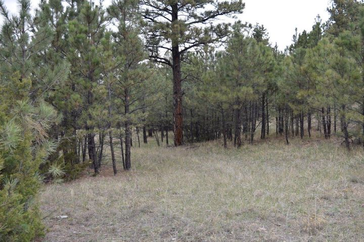 Nhn Twisted Pines, Roundup, MT 59072