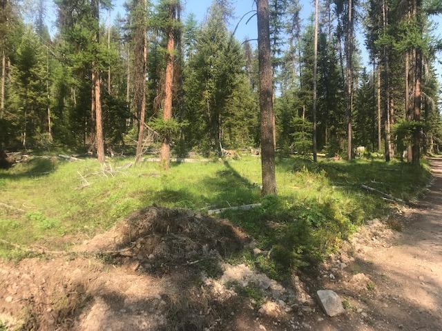 Nhn W Fork Petty Creek Road, Alberton, MT 59820
