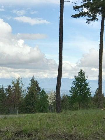 410 Buffalo Trail, Somers, MT 59932