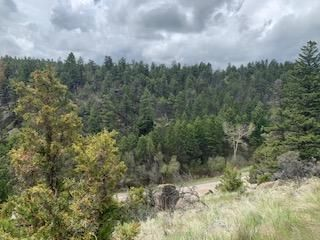 Jardine Forest Park, Whitehall, MT 59759