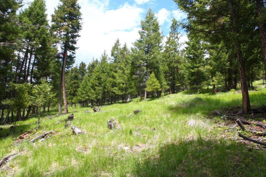 260 Wild Horse Trail, Kila, MT 59920