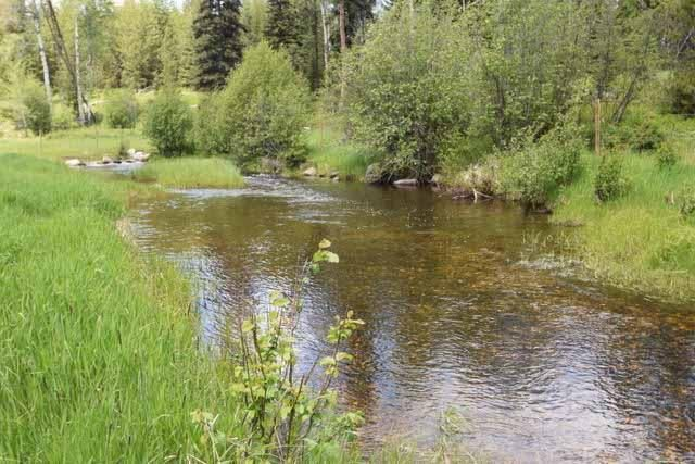 2828 Lake Creek Road, Trego, MT 59934