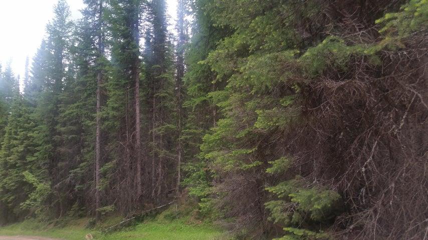 Nhn Edna Creek Road, Trego, MT 59934