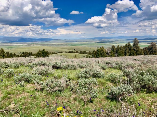 231 Mountain View Trail, White Sulphur Springs, MT 59645