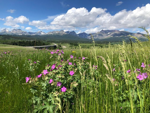 Nhn Hwy 2 (5 Acres), East Glacier Park, MT 59434