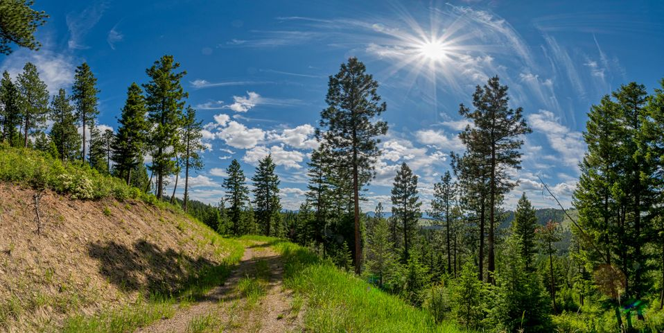 350 Colorado Gulch Road, Missoula, MT 59808