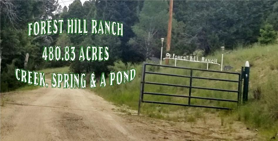 2408 Antelope Gulch Road, Anaconda, MT 59711