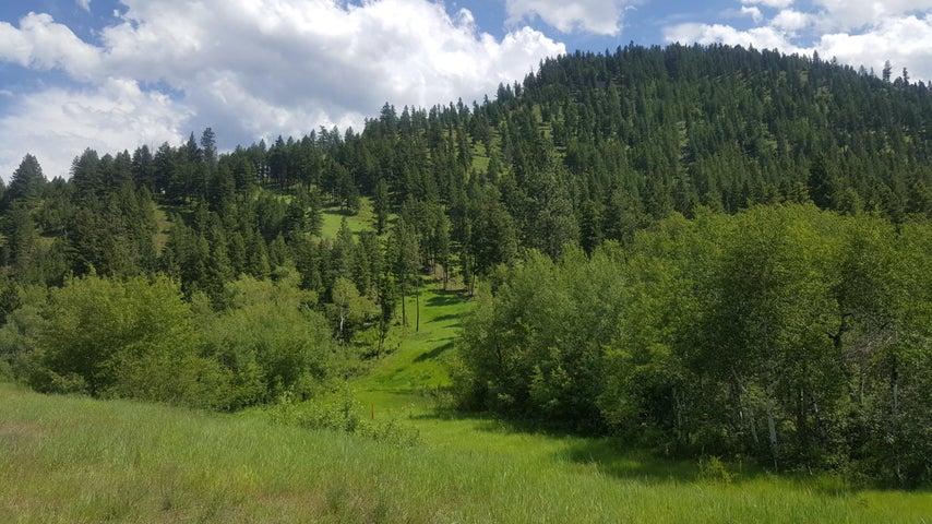 Tbd Bateman Creek Road, Clinton, MT 59825