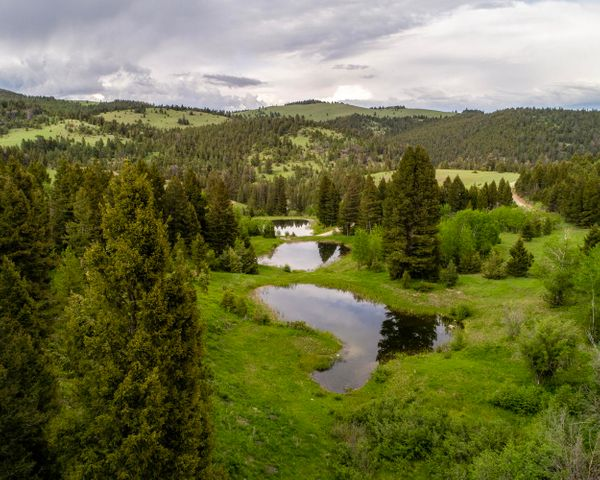 7781 Skelly Gulch Road, Helena, MT 59602
