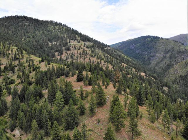 Nhn Spring Hill Road, Frenchtown, MT 59834
