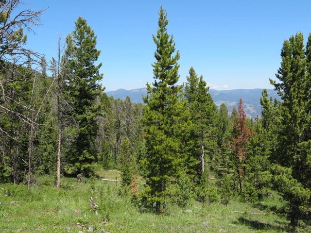 Bonanza Quartz Hill Road, Wise River, MT 59762