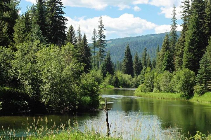 Tbd Yaak River Road, Yaak, MT 59935