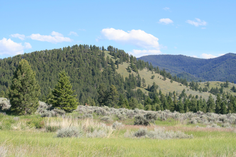 Nhn Soft Rock Road, Corvallis, MT 59828