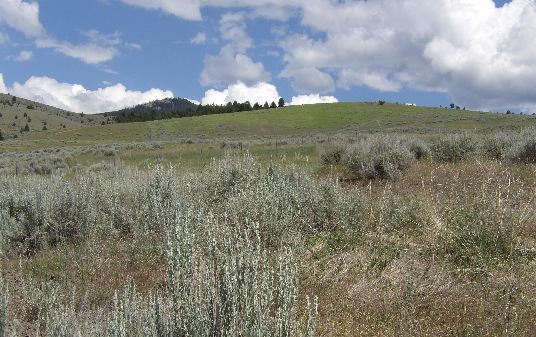 Nhn Sapphire Ranch Trail, Corvallis, MT 59828