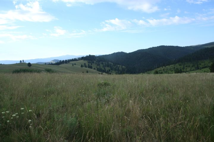 Tbd Travis Creek Road, Clancy, MT 59634