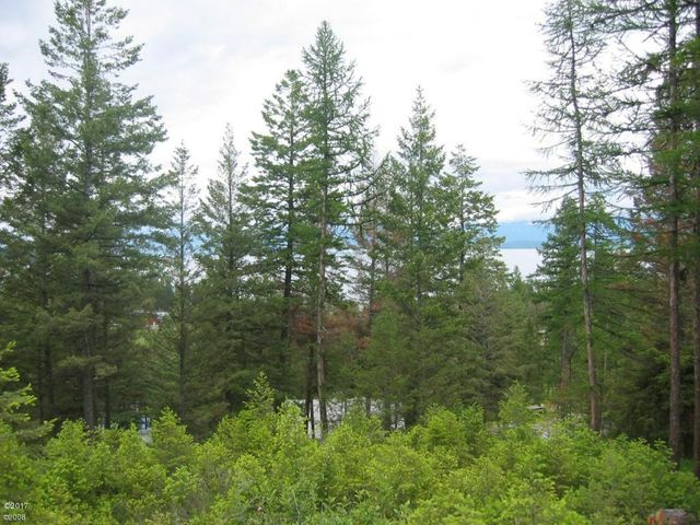 171 Lakeview Lane, Lakeside, MT 59922