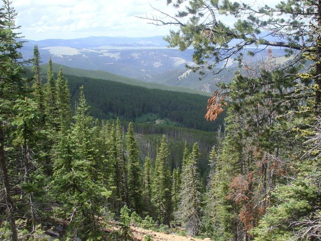 Lot 3020, Neihart, MT 59465