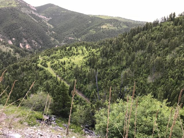 Nhn Secret Gulch Road, Drummond, MT 59832