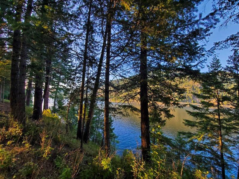 21 Washington Drive, Trout Creek, MT 59874