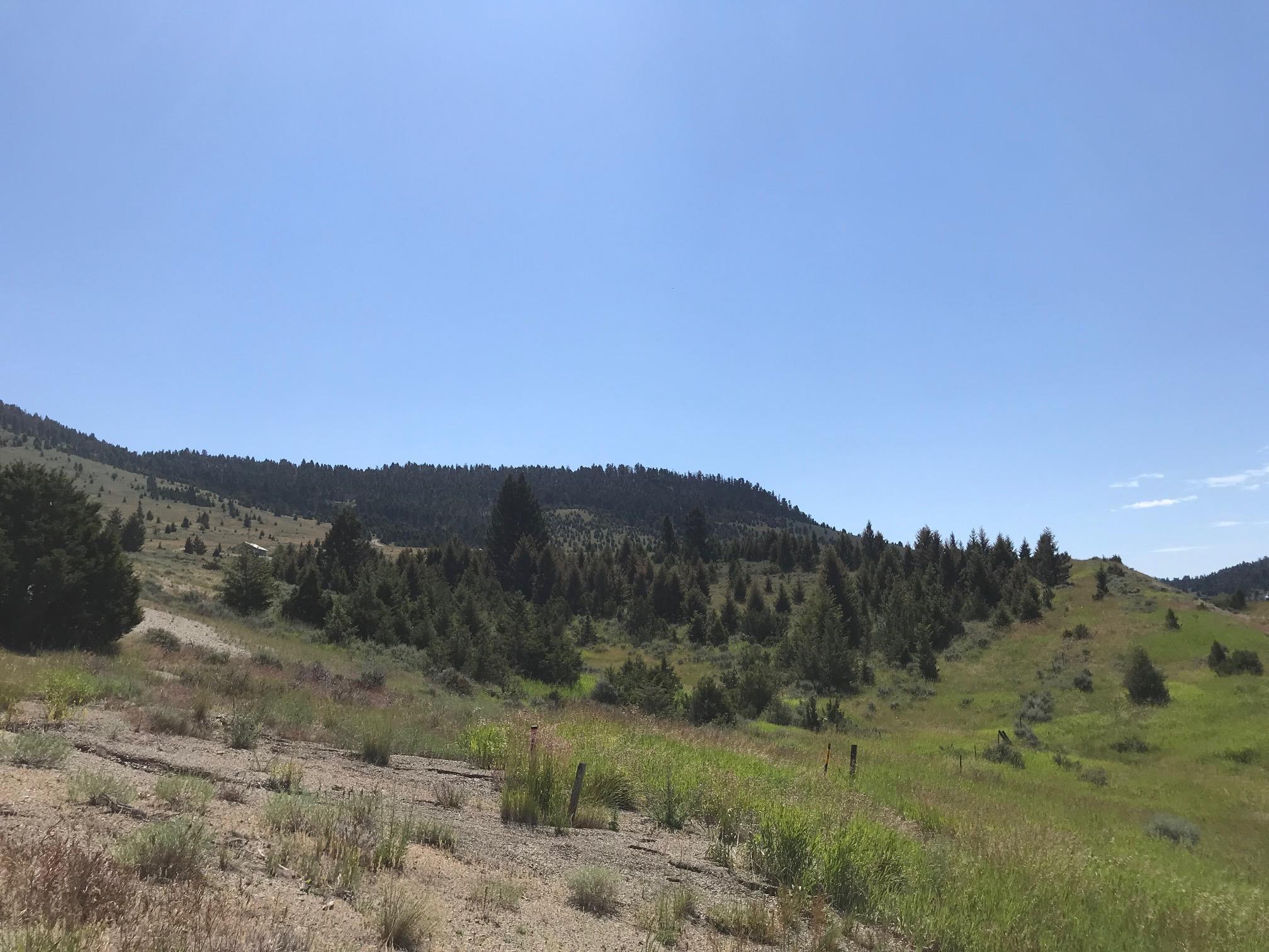 Lot 4 Butler Hill- Hwy 89 N, White Sulphur Springs, MT 59645