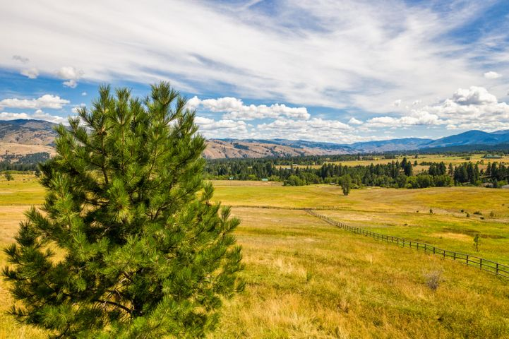 Tract 2-C Stags Leap Road, Darby, MT 59829