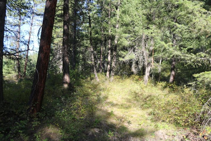 Lot 1 Mclaughlin Creek Road, Paradise, MT 59856